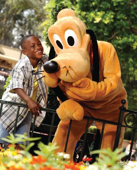 Walt Disney World Room Only Specials