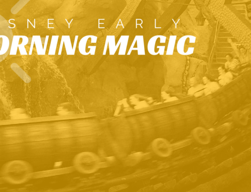 'Disney Early Morning Magic'