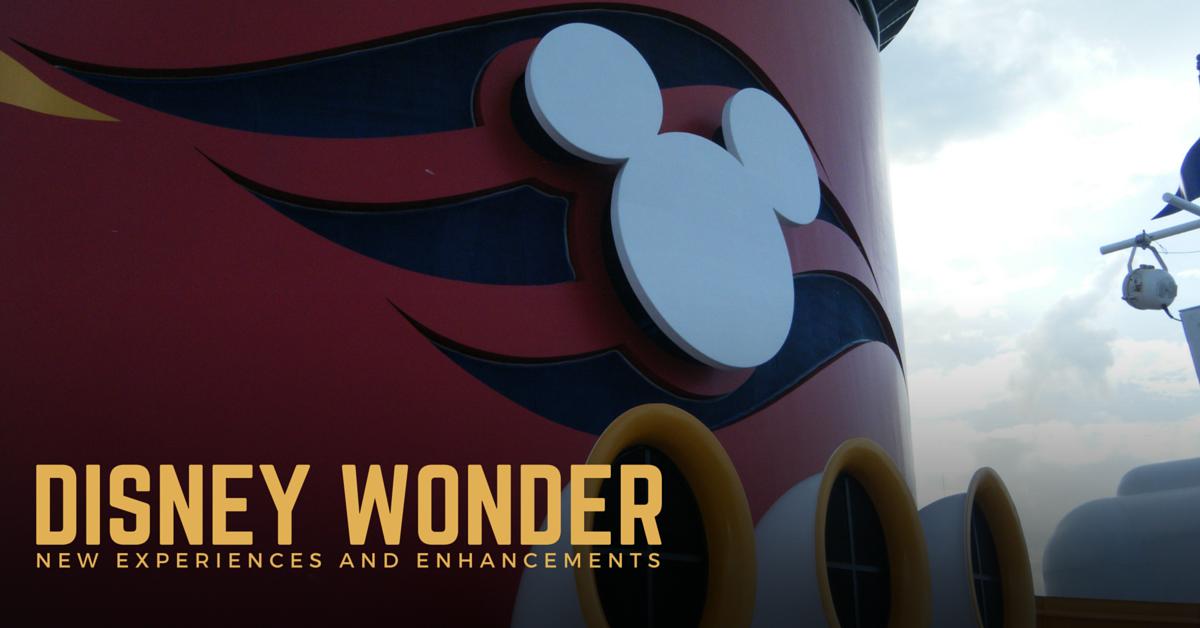 Disney Wonder Drydock