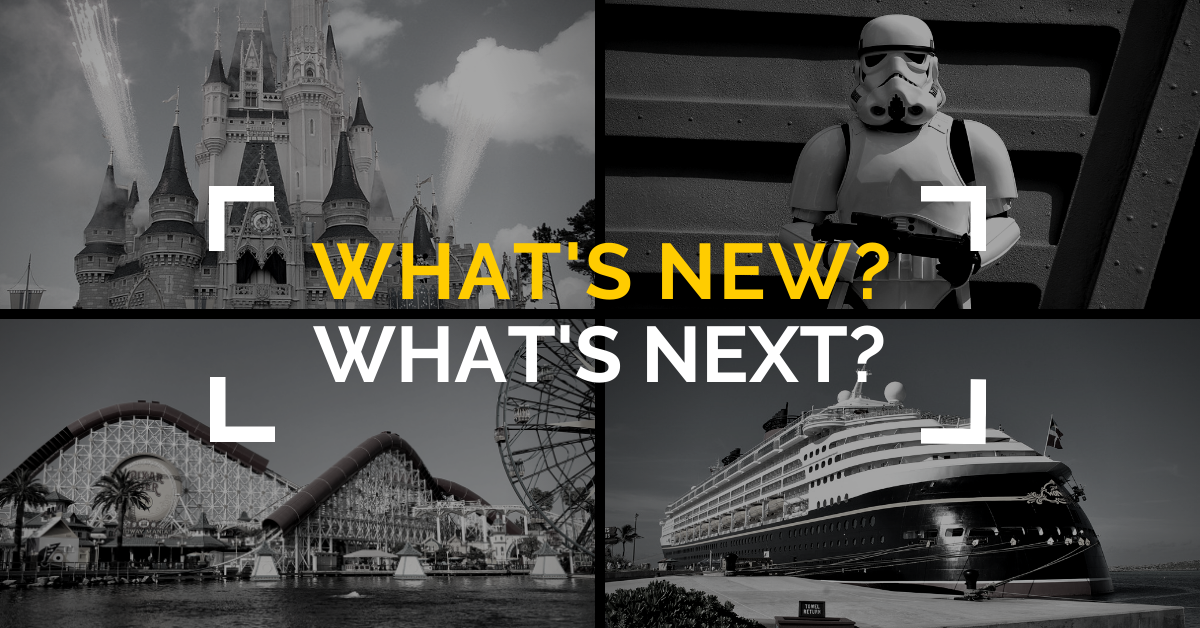 What's New What's Next Image